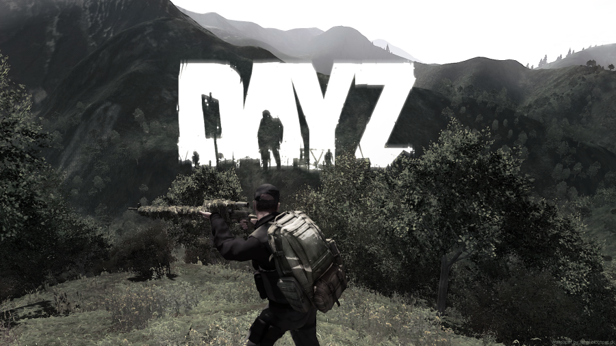 dayz1.png
